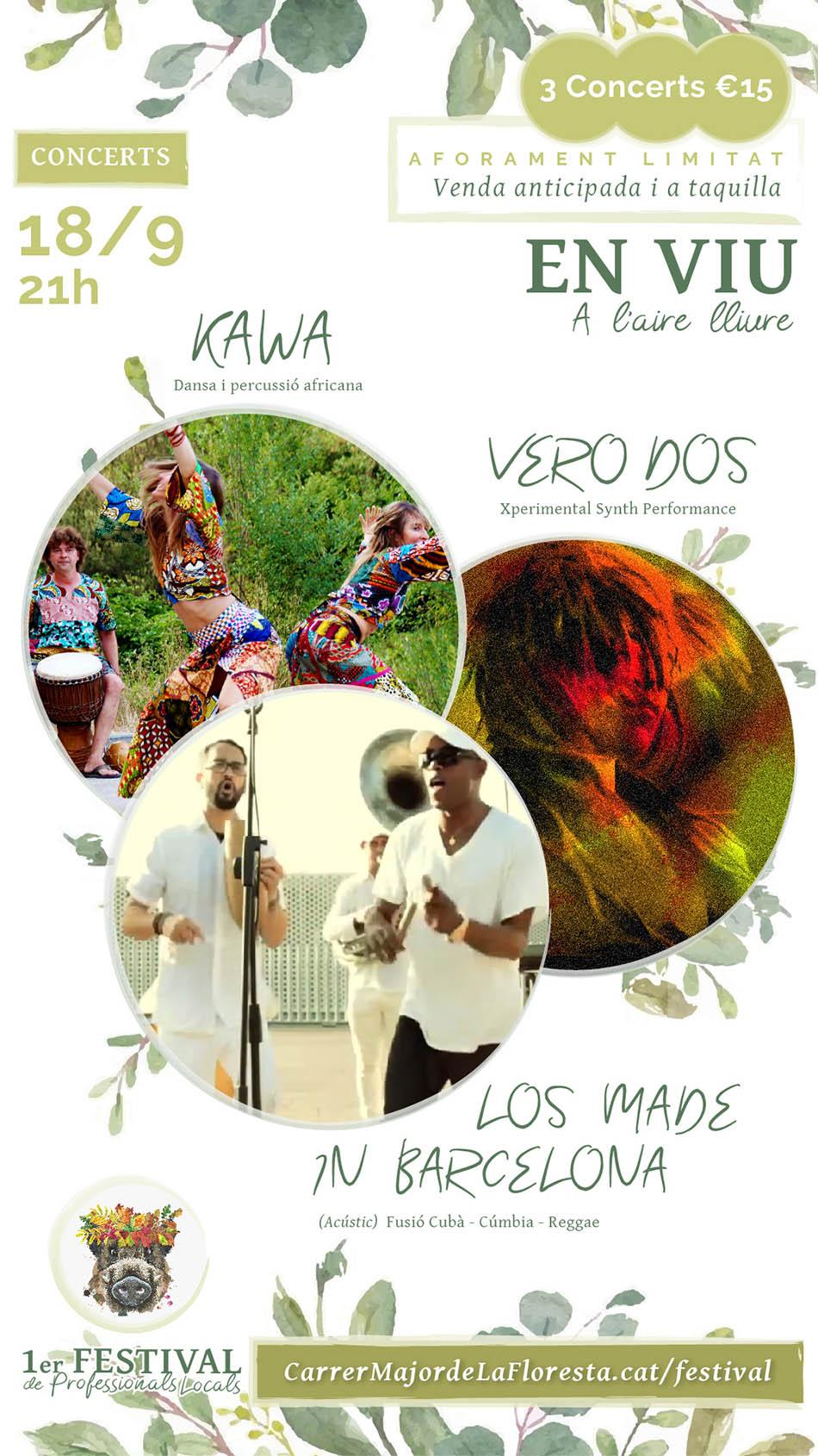 Venta de entradas para los conciertos del 1er Festival de Professionals Locals
